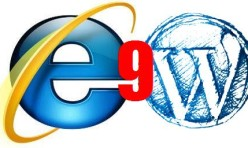 Internet Explorer 9 and Wordpress Theme problems