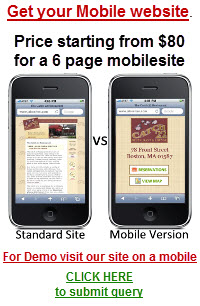 Mobile Site Development