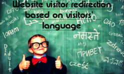 Language based redirection for website visitors - Extension for Webbuilder11x